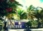 Purple creole house / Case créole violette