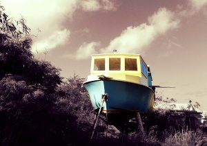Flyin boat